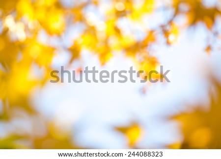 Abstract autumn background - stock photo