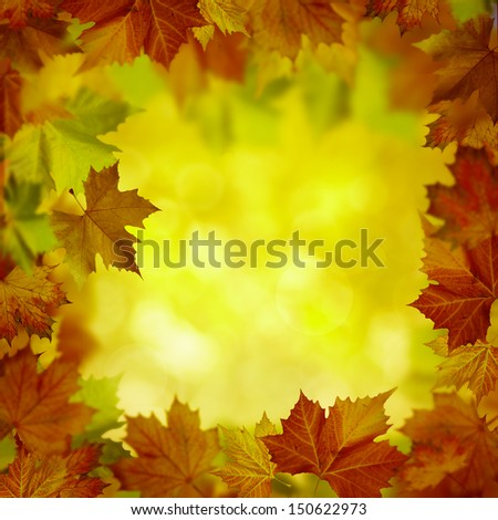Abstract autumnal backgrounds for your design - stock photo