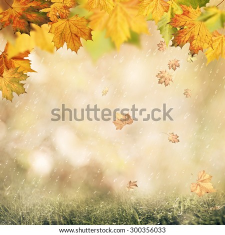 Abstract autumnal backgrounds with beauty bokeh and rain drops - stock photo