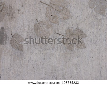 Abstract background from autumn leaves - stock photo