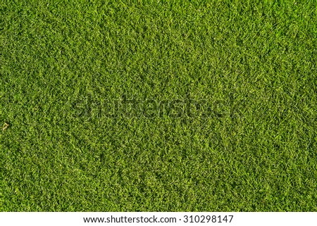 Abstract background green artificial Turf, Green textur background - stock photo