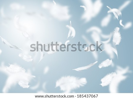 Abstract background image of white feathers flying in air - stock photo