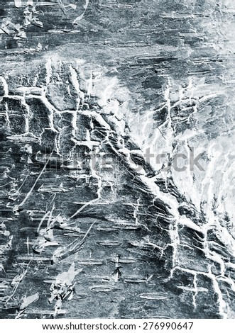 abstract background of a birch bark close up, x-ray effect - stock photo