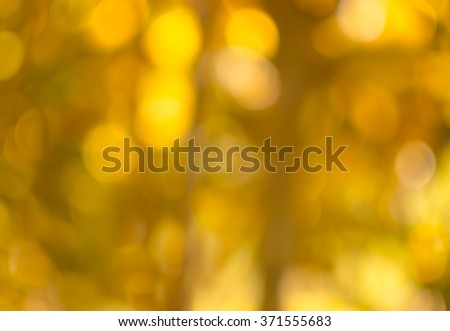 Abstract blur natural forest with bright round bokeh in Autumn season.. - stock photo