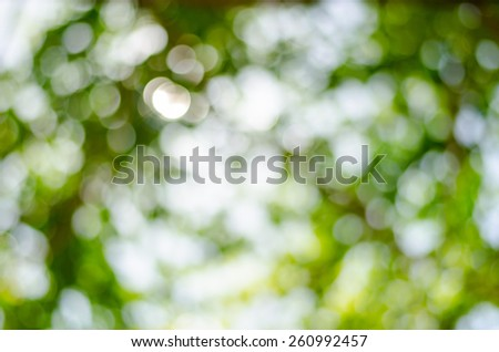 Abstract blur of natural outdoors bokeh in green and yellow tones - stock photo