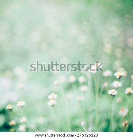 Abstract blurred green nature background. - stock photo