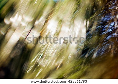 Abstract blurred image of conifer branch;  for  blurred background - stock photo