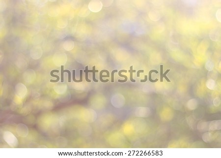 Abstract bokeh background in soft pastel colors: yellow, green and purple.  - stock photo