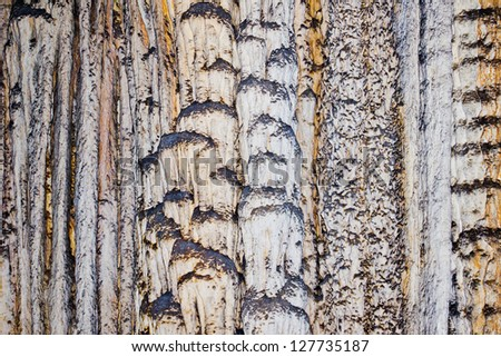 Abstract closeup of rocks in a drip stone cave - stock photo