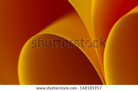 Abstract curves in orange - stock photo