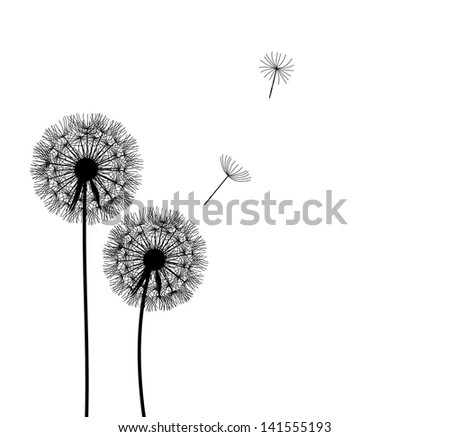 abstract dandelion background   illustration - stock photo