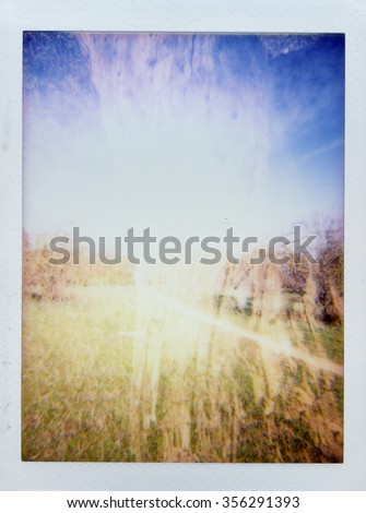 Abstract double exposure rural landscape and faded tree trunk closeup. Blurry toy camera photo. - stock photo
