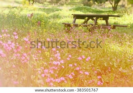 abstract dreamy photo of spring meadow with wildflowers. vintage filtered image. selective focus  - stock photo