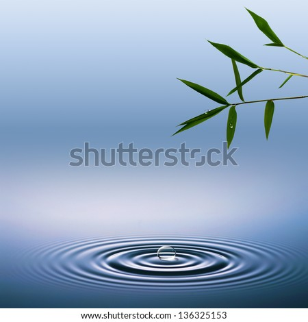 Abstract environmental backgrounds with bamboo and water droplets - stock photo