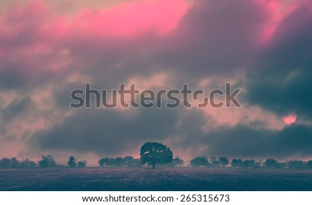 abstract filtered infrared landscape, sunset colored in red over the misty field  - stock photo