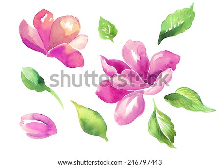 abstract flowers bud and green leaves set, floral watercolor illustration isolated on white background - stock photo