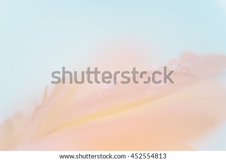abstract full color water drop on leaf  - stock photo