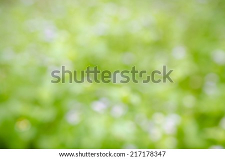 abstract green bokeh  background - stock photo