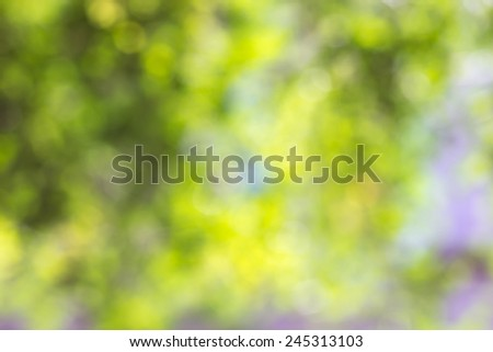 abstract green nature background with blurry bokeh defocused lig - stock photo