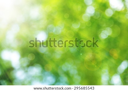 abstract green spring with sunlight bokeh background from tree - stock photo