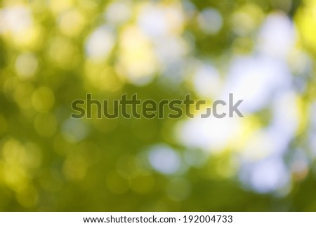abstract image of a green plant background closeup - stock photo