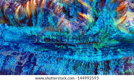 Abstract macro of a clam photographed in the beautiful Whitsundays in Australia. - stock photo