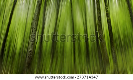 Abstract motion blur of trees in a green forest in spring time,  - stock photo