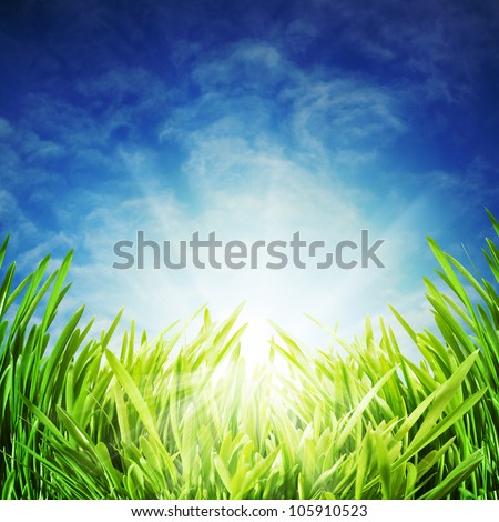 Abstract natural backgrounds under the blue skies - stock photo