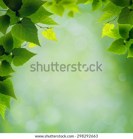 abstract natural backgrounds with green foliage and beauty bokeh - stock photo
