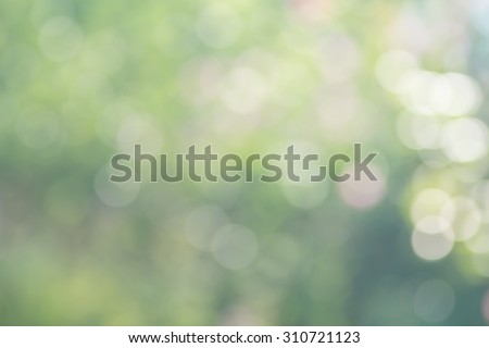 Abstract nature soft focus background with beautiful bokeh. Blurred green background - stock photo