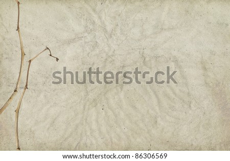 Abstract paper background with dry flower stalks. - stock photo