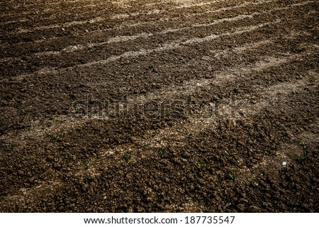 Abstract perspective view to dark wide wet soil ways, trails, dry rows outdoor Natural brown dirty texture of organic and plowed rural land in country farm, prolific rough surface for outside planting - stock photo