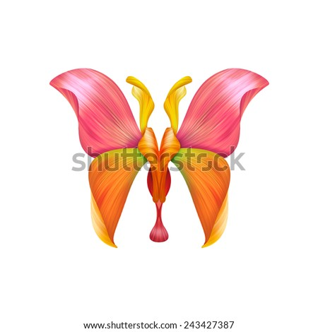 abstract petal butterfly illustration isolated on white background, floral design element - stock photo