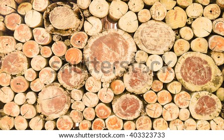 Abstract photo of a pile of natural wooden logs background, top view . - stock photo