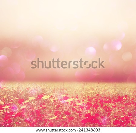abstract photo of wild flower field and bright bokeh lights - stock photo