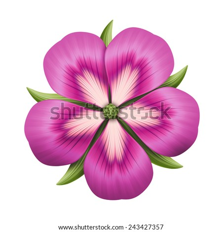 abstract pink flower illustration isolated on white background, single design element - stock photo
