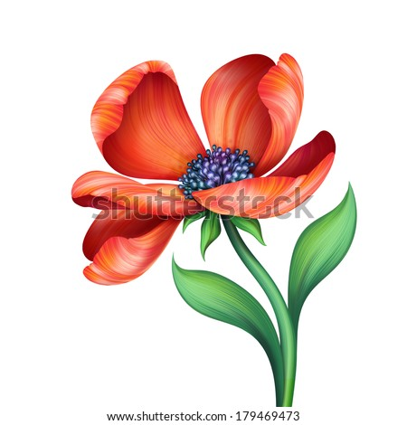 abstract red flower isolated on white background, graphic illustration - stock photo