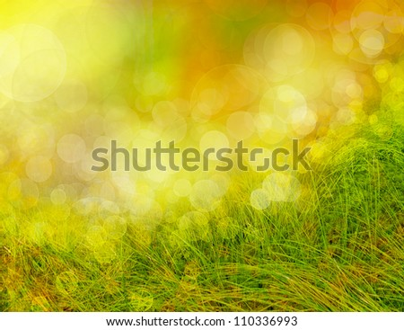 abstract season  background with grass and bokeh - stock photo