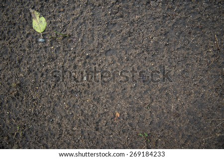 Abstract soil texture background - stock photo