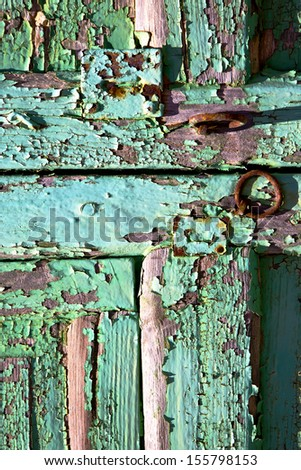 abstract  spain canarias brass brown knocker in a green closed wood  door  lanzarote   - stock photo