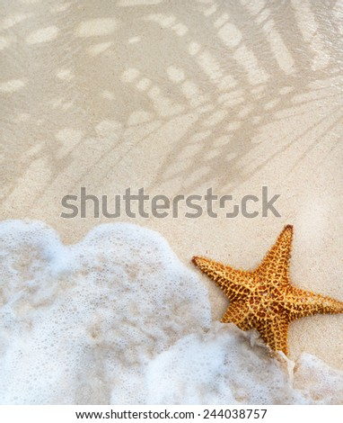 abstract summer Beach background - stock photo