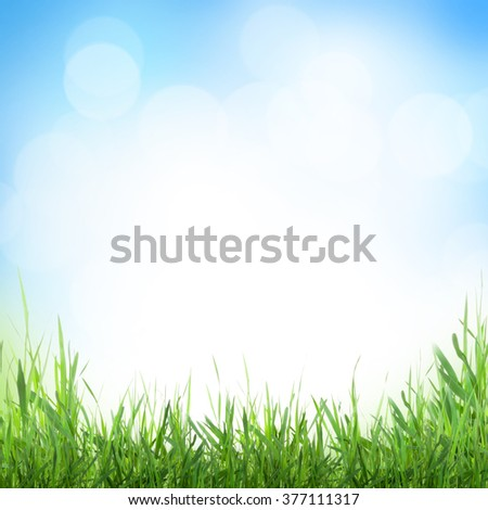 Abstract sunny spring background with grass and bokeh - stock photo