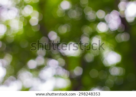 abstract tree green nature background with bokeh defocused lights - stock photo