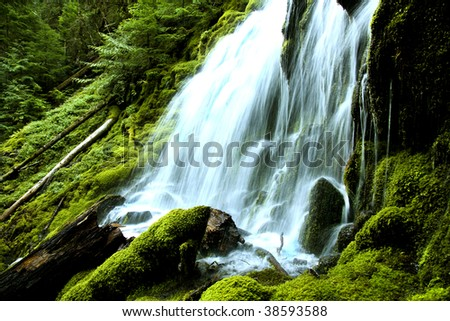 Abstract view of  Upper Proxi falls in the Oregon cascades during the summer of 2009. Focus point at immediate foreground. - stock photo