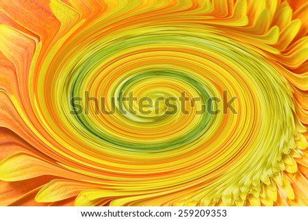 Abstract vortex created from orange-yellow chrysanthemum flower. The vortex is in the middle of illustration. - stock photo