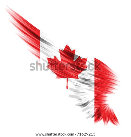 Abstract wing with Canada flag on white background - stock photo
