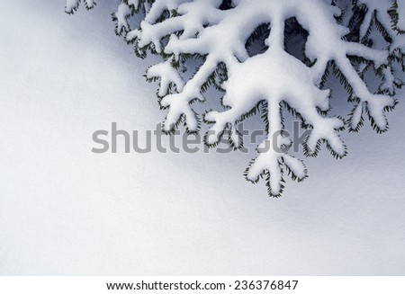 Abstract winter and Xmas background for your design - stock photo