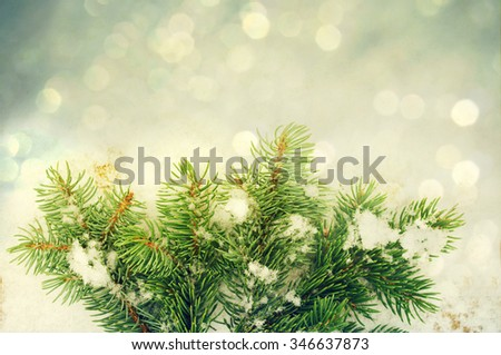 Abstract winter festive background for Christmas and new year for your design. A Christmas card with a fir tree branch on a snow background with bokeh - stock photo