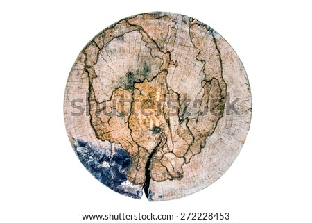 abstract wood map - stock photo