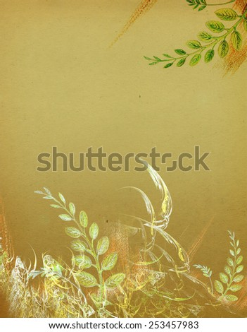 Acacia leaves, drawn in pencil on old paper - stock photo